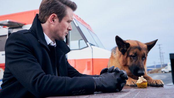O «Αστυνόμος Ρεξ» επιστρέφει στον ΑΝΤ1 με νέα επεισόδια